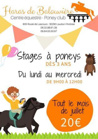 Stage Poney